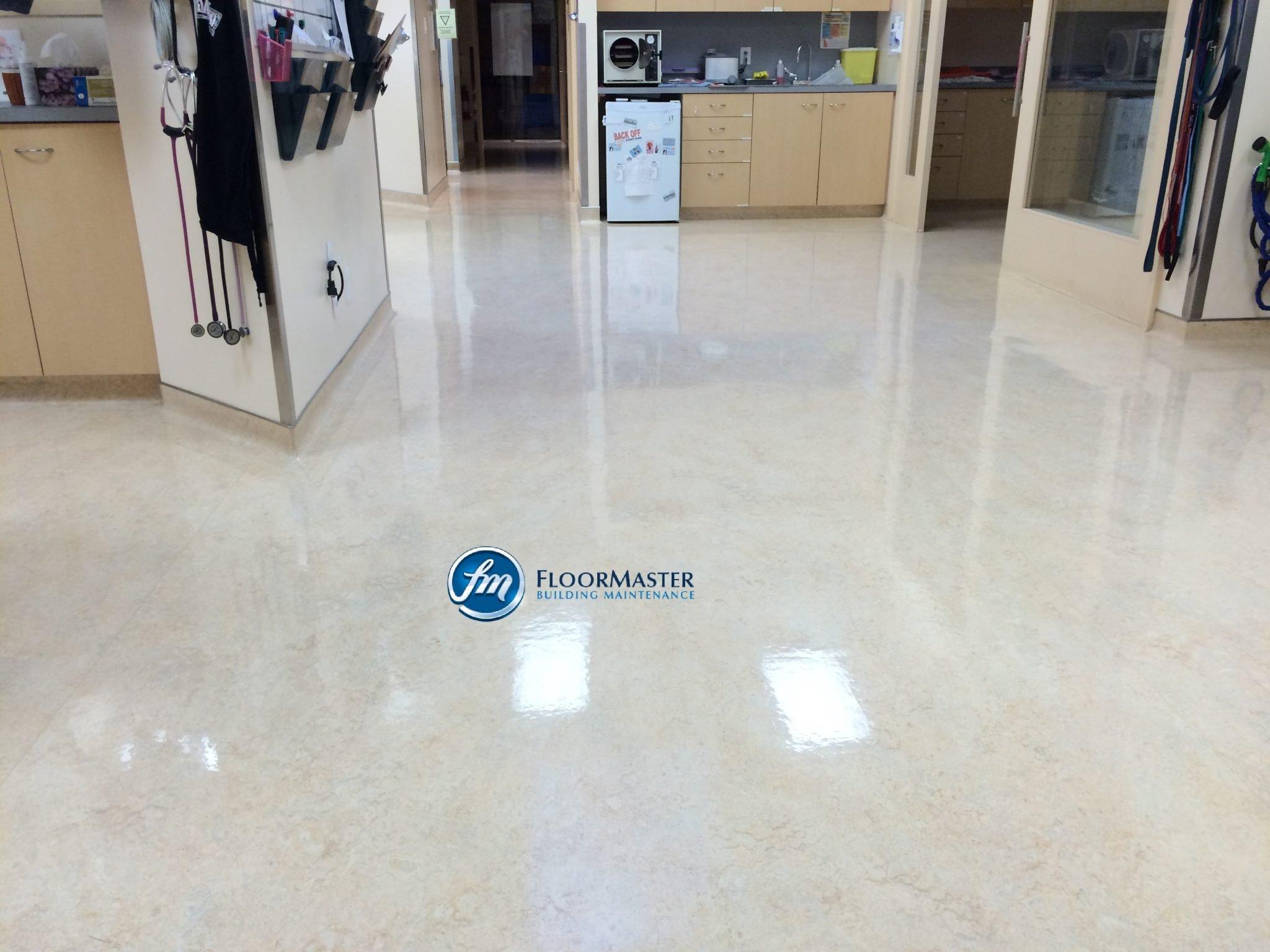 Floor Master Building Maintenance Floor Stripping